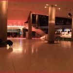 Chris-fraktalorg-de-Berlinale-2016-Day9-023